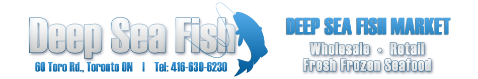 North York Seafood - Deep Sea Fish Logo